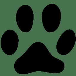 Animals Cat Track icon