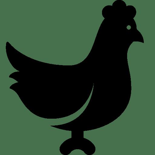 Animals-Chicken icon