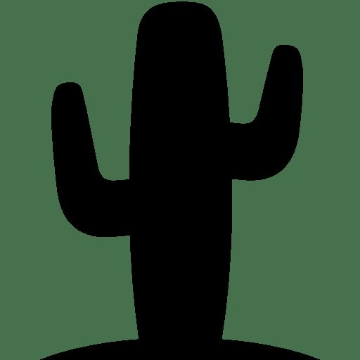 Cinema-Western icon