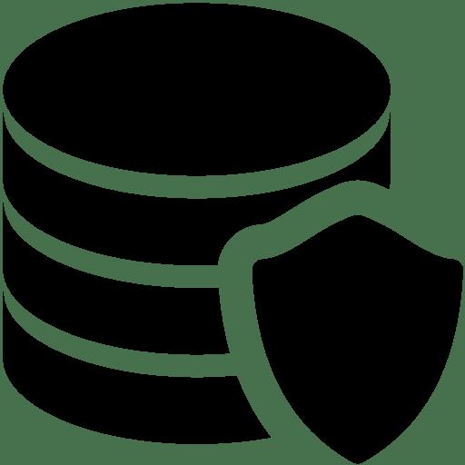 Database-Protection icon