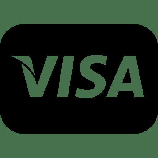 Finance-Visa icon