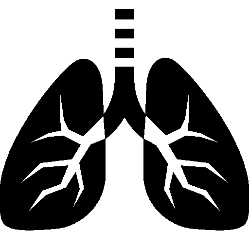 Healthcare Lungs icon