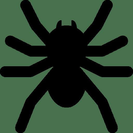 Holidays-Spider icon