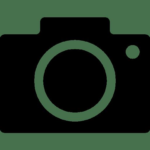 Logos Google Images icon