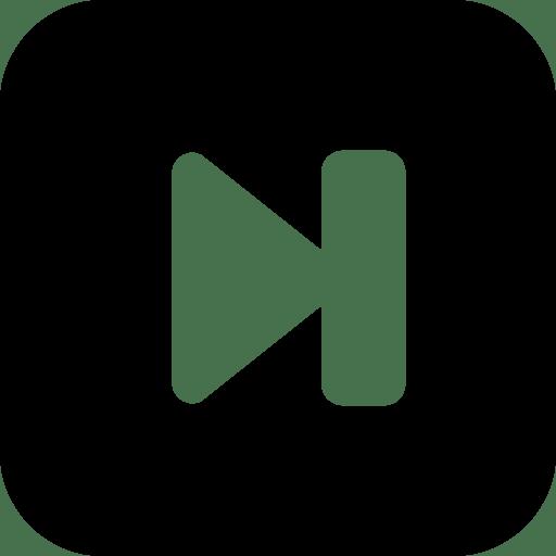 Media-Controls-Last icon