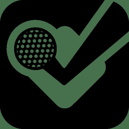 Social Networks Foursquare icon