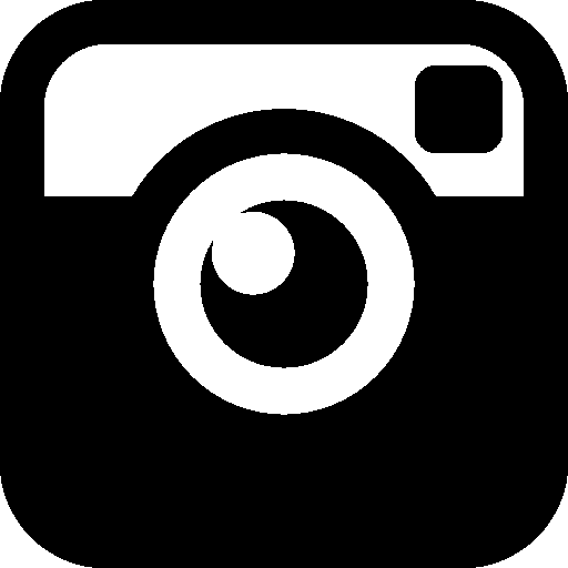 Social-Networks-Instagram icon
