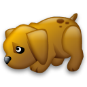 dog icon