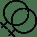 Lesbian icon