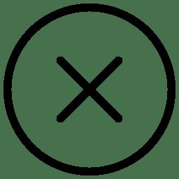 Close Window icon