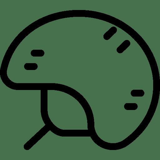 Bike-Helmet icon