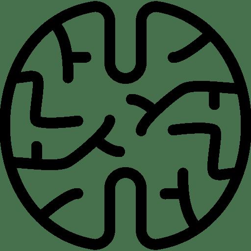 Brain-2 icon