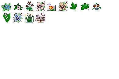 Flower 1 Icons