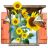 Flowers-Sunflowers-Window icon