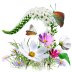 Flowers-Wildflowers icon