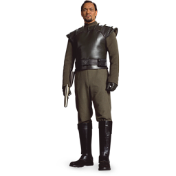 Bail Organa icon