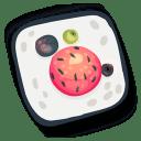 Sushi 17 icon