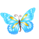 Butterfly blue icon