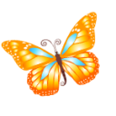 Butterfly-orange icon