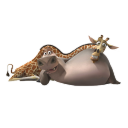 Gloria and Melman icon
