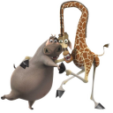 Melman and Gloria icon