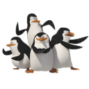 Penguins icon
