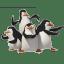 Penguins icon