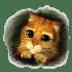 Puss-3 icon