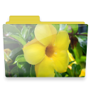 flower folder icon