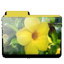 Flower folder icon