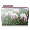 Flowers folder icon
