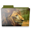 lion folder icon