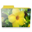 Flower-folder icon