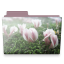 flowers folder icon