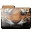 Tiger-folder icon