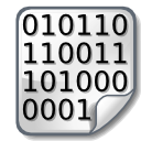 Binary File Icon