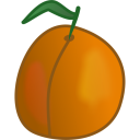 apricot icon