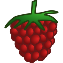 raspberry icon