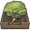 Tree in an inbox icon