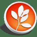 CS2 Standard icon