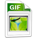 Imagen GIF icon