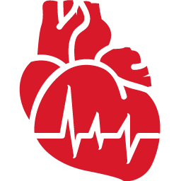 Cardiology red icon