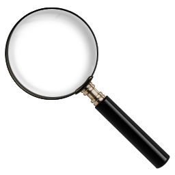 Magnify Search icon