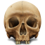 http://icons.iconarchive.com/icons/messbook/outdated/64/Skull-icon.png