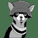 Army Chihuahua icon