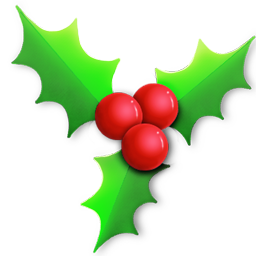 Holly light icon