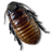 Caca Roach icon