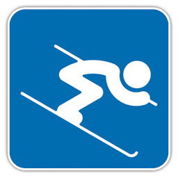 Alpine Skiing icon