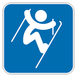 Freestyle Skiing Aerials icon