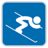 Alpine-Skiing icon
